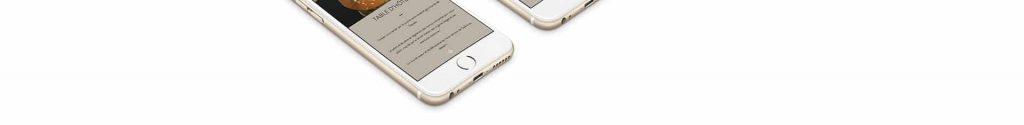 iphone 2 1